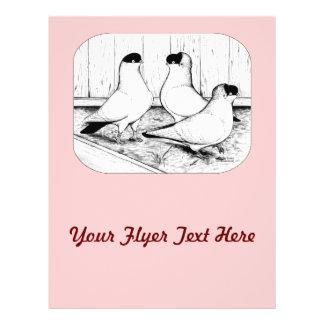 Helmet Pigeon Trio Flyers