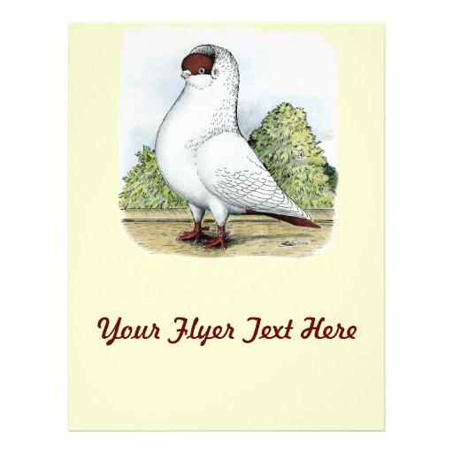 Helmet:  Red Pigeon 21.5 Cm X 28 Cm Flyer