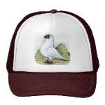 Helmet:  Red Pigeon Cap