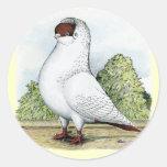 Helmet:  Red Pigeon Round Sticker