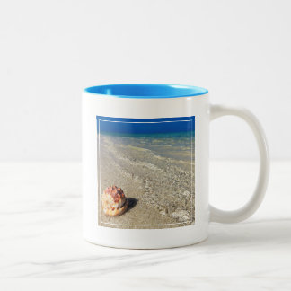 Helmet Shell In Tropical Lagoon| Cassis Rufa Two-Tone Coffee Mug
