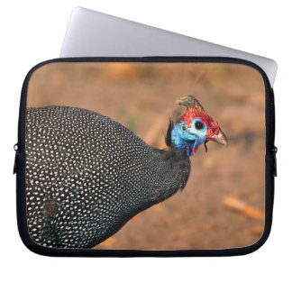 Helmeted Guinea Fowl (Numida meleagris). Africa, Laptop Sleeve