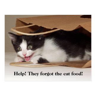 Help! No Cat Food Post Card