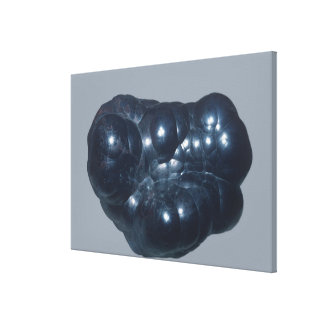 Hematite is an iron ore canvas print