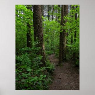 Hemlock Trail 1 GT Poster