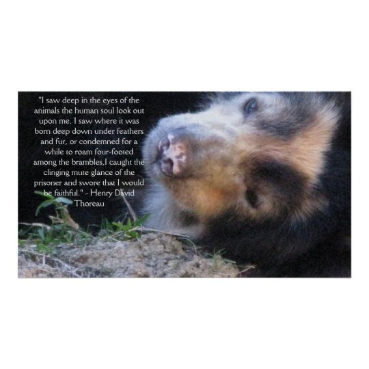 Henry David Thoreau ANIMAL RIGHTS Quote Poster