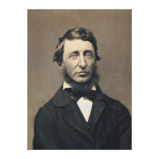 Henry David Thoreau Portrait Maxham daguerreotype Stretched Canvas Prints