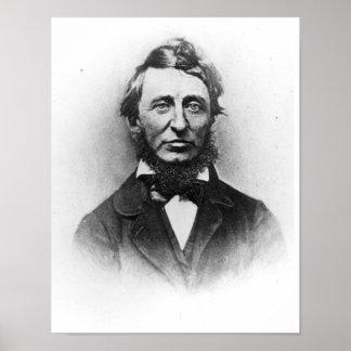 Henry Thoreau Poster