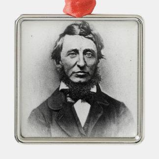 Henry Thoreau Silver-Colored Square Decoration