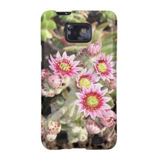 Hens and Chicks Flowers Samsung Galaxy SII Covers