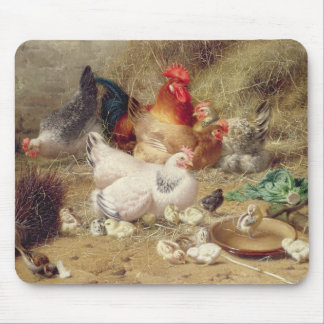 Hens roosting with their chickens mouse mat