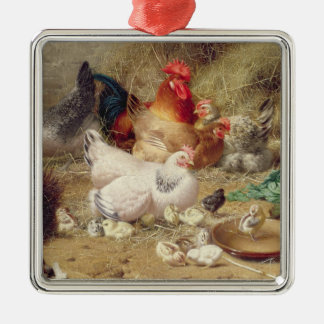 Hens roosting with their chickens Silver-Colored square decoration
