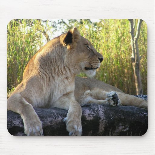 Her Majesty: The Lioness  Mousepad