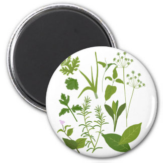 Herb Collection Magnet