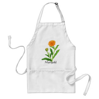 Herb Garden Series - Marigold Standard Apron