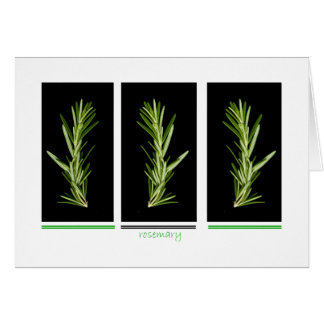 herb - rosemary card