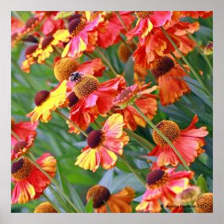 Herbal Garden Print