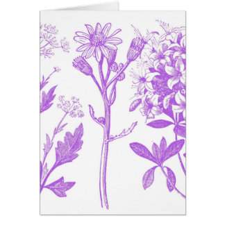 Herbal Greeting Card