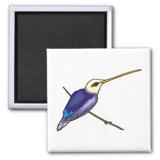 Herbert Hummingbird Fridge Magnet