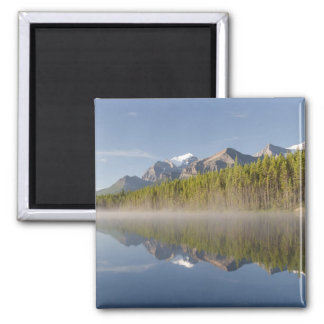 Herbert Lake at Icefields Parkway Alberta Canada Square Magnet