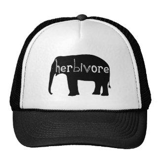 Herbivore - Elephant Cap