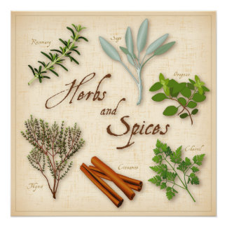 Herbs and Spices, Rosemary, Sage, Thyme, Cinnamon Poster