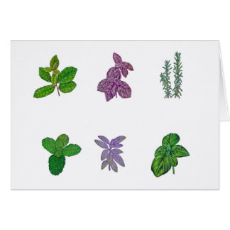 Herbs in watercolour card