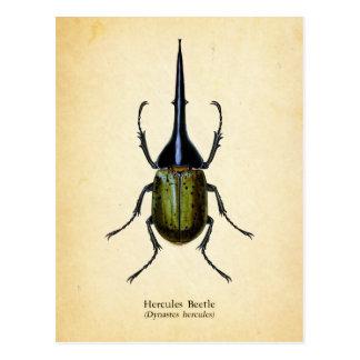 Hercules beetle postcard