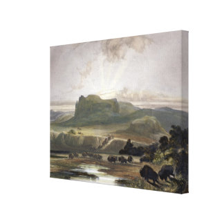 Herd of Bison on the Upper Missouri, plate 40 from Canvas Print