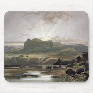 Herd of Bison on the Upper Missouri, plate 40 from Mouse Mat