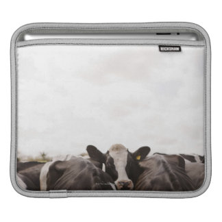 Herd of cattle and overcast sky 2 iPad sleeves