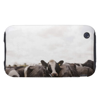 Herd of cattle and overcast sky 2 iPhone 3 tough cases