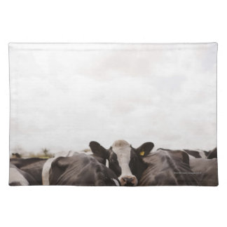 Herd of cattle and overcast sky 2 placemat