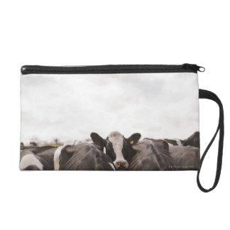 Herd of cattle and overcast sky 2 wristlet