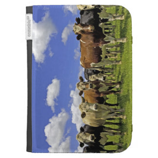 Herd of cattle and overcast sky case for kindle