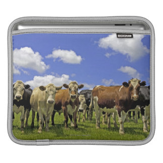 Herd of cattle and overcast sky iPad sleeve