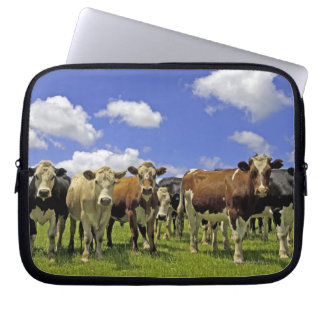 Herd of cattle and overcast sky computer sleeves