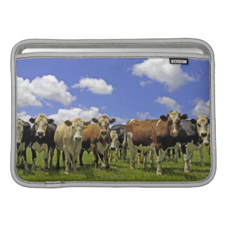 Herd of cattle and overcast sky MacBook air sleeves