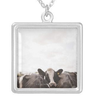 Herd of cattle and overcast sky silver plated necklace