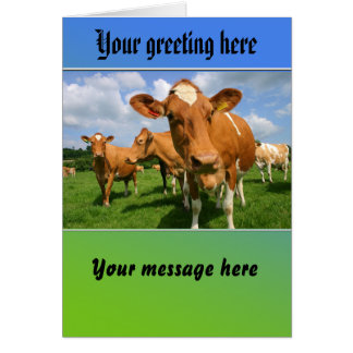 Herd of cows greeting card