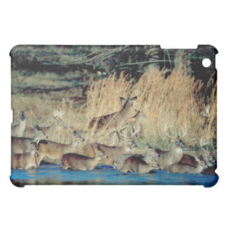 Herd of deer 2 cover for the iPad mini
