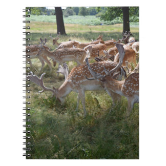 Herd of deer in a park notebook