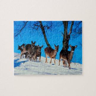 Herd of deer jigsaw puzzle