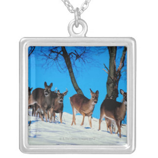 Herd of deer silver plated necklace
