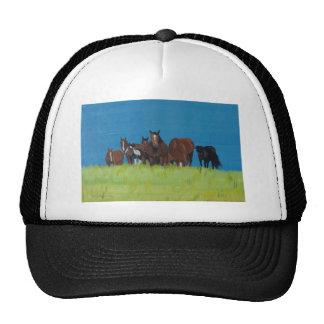 Herd of horse resting