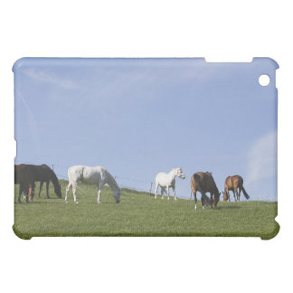 herd of horses on meadow iPad mini covers
