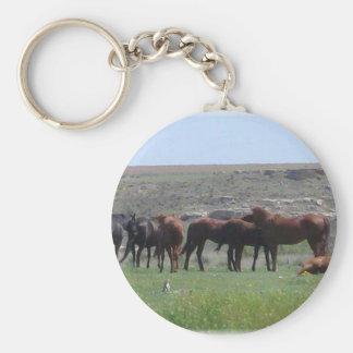 Herd of Horses & Prairie Dog - Logan County KS Basic Round Button Key Ring