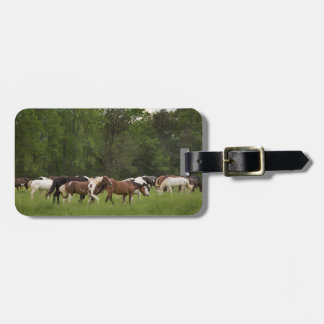Herd of horses, Tennessee Luggage Tag