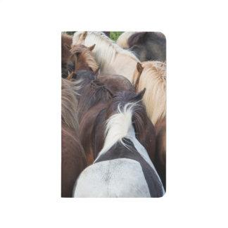Herd of Icelandic horse Journal