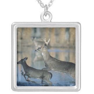 Herd of whitetail deer running through water silver plated necklace